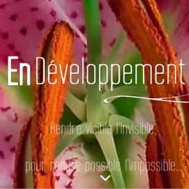 Webdesign et Développement